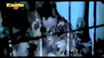 BheeGi BheeGi RaaTOn MeiN  ~  ( pOp sOng HD ) - Downloaded from youpak.com