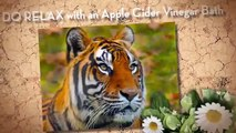 benefits of drinking apple cider vinegar  apple cider vinegar benefits   best natural diuretics skin
