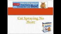 Cat spraying no more | Cat spraying no more Review