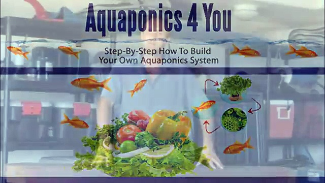 Aquaponics 4 You Reviews-Know What's Good And Bad