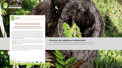 Parcours de volailles : biodiversité