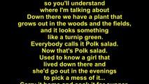 Elvis Presley – Polk Salad Annie Lyrics