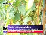 China a devenit a doua piață de export pentru vinurile românești. Cu aproape 200.000 de hectare cultivate cu viţă de vie, România a ajuns pe locul 6 în topul ţărilor producătoare de vin.