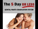 The 5 Day or Less Genital Warts Eradication System.wmv | How Do You Get Rid of Genital Warts