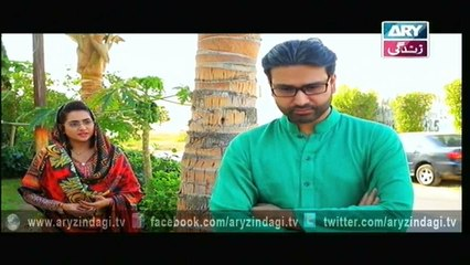 Behnein Aisi Bhi Hoti Hain - Last Episode - 4th February 2016