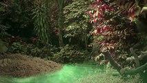 Hypnotic Soundscapes -- Ancient Elven Magick Power
