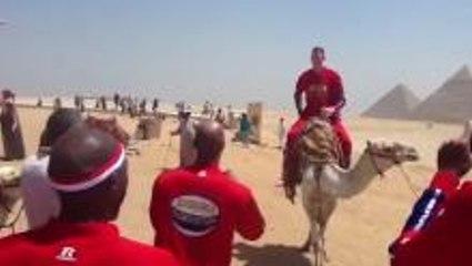Camel vs 7'8
