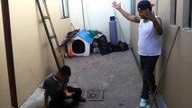 Peleas borrachos pandilleros 2016 | 2016 drunken gang fights