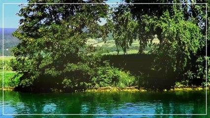 Croisière (Les trois Lacs) en Suisse