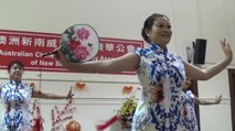 Sydney Chinese New Year Part 1 of 11 Aust Chinese Comm Asso & Shaanxi Culture Music World Square, 6 Feb 2016