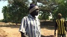 The grave-diggers of Maiduguri: burying Boko Haram and the past