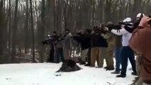 Couper un arbre à l'américaine... Coups de fusil