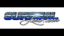 Party with Surreal Limo Bus - Party Bus Rental Company in Chicago