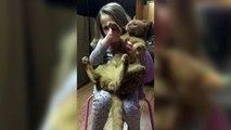 Un chat très très patient avec une fillette qui le prend pour son bébé