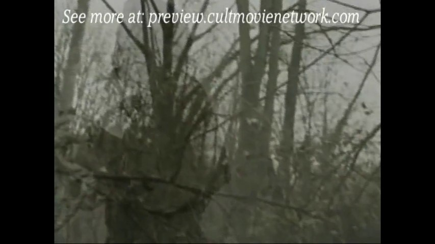 Return of The Curse (2008)