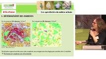La biodiversité urbaine et la trame verte et bleue en ville. Audrey Muratet, Natureparif