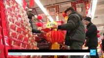 Nouvel An chinois : le monde célèbre l'entrée dans l'année du Singe de feu