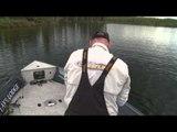 Fishful Thinking - Fishful Thinking