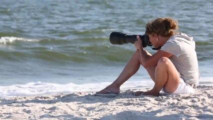 I, Photographer: Lisa Franceski's Shore Birds