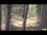 The Hunting Chronicles - Saskatchewan Big Spring Black Bears
