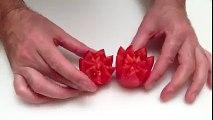 Cum să dai unei roșii o formă impresionantă! Lasă-i fără cuvinte pe cei care se vor aduna în jurul mesei!
