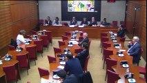 Mission d'information sur les moyens de Daech. Audition de M. Pierre-Jean Luizard, directeur de recherche au CNRS (1/2)
