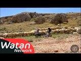 مسلسل الشام العدية بيت جدي الجزء الثاني ـ الحلقة 4 الرابعة كاملة HD