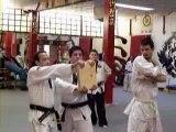 tae kwon do yellow belt test
