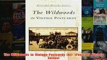 Download PDF  The  Wildwoods  in  Vintage  Postcards  NJ   Postcard  History  Series FULL FREE