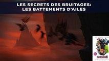 «Hotel Transylvanie 2»: Les secrets des bruitages - Les battements d'ailes