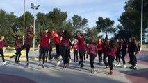 Dans le cadre de l'euro 2016, un concours national de Flashmob a été organisé par l'UNSS. Nous y participons et espérons que cette vidéo vo