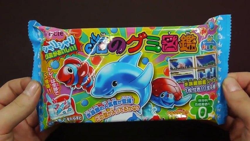 Trò chơi làm kẹo hình cá bằng đồ chơi nấu ăn của Nhật Bản | Godialy.com
