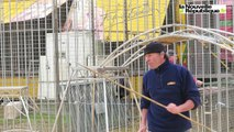 VIDÉO. Tours : les lions du cirque Pinder se préparent