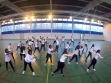 Flashmob concours Euro 2016 Lycée Joliot