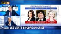 """Noël Mamère: """"Emmanuelle Cosse contribue à ruiner la parole politique"""""""