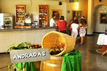 VC_Vinho Andradas_14022016_Bloco 04-Site TV-1-1