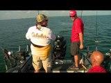Fish TV - Land O' Lakes Walleye