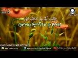 Conveying Rewards to the Parents   Maulana Tariq Jameel Sahab [DB]