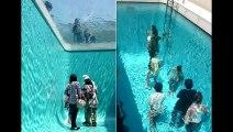 Plonger dans une piscine sans se mouiller… Oui c'est possible ! Regardez !