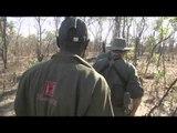 Hornady's Dark and Dangerous - Zimbabwe Leopard and Tanzania Lion Part 2