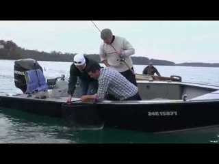 Niagara River Steel Head And Brown Trout