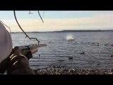 Mallard Duck Hunting Traps