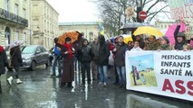 Bordeaux: marche blanche pour dénoncer les pesticides