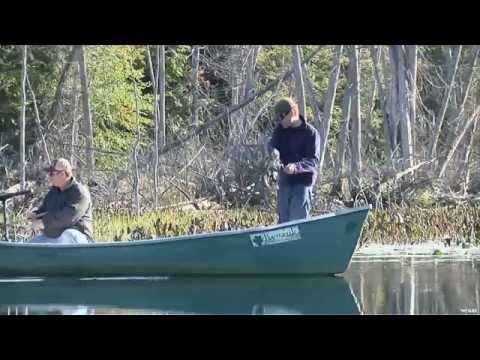 Fairmont Kenauk Fishing Bass In Quebec