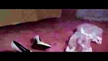 Elissa ... Halet Hob - Clip Promo - اليسا ... حالة حب - برومو الكليب