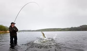 Huge perch and pike trolling. What a nice fishing !!!