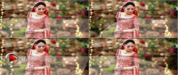 Sharmila Farooqi Wedding Pictures