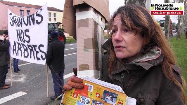 VIDEO. Poitiers. Abattage d'arbres et arrestation musclée à Poitiers