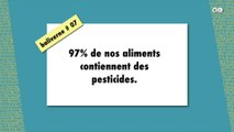 Intox Cash Investigation : 97% de nos aliments contiennent des pesticides / BALIVERNE #07