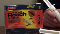 How to Kill Roaches in Your House - Roach Gel